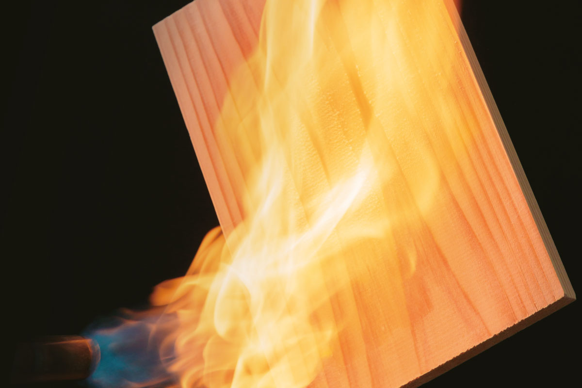 木守り専科FIRE Protectイメージ画像01